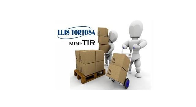 Lee más sobre el artículo MINI-TIR, cuando el tiempo de entrega es importante.